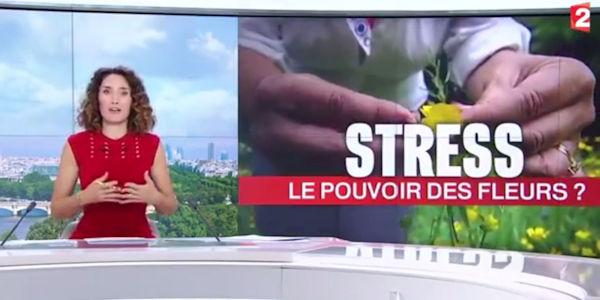vidéo pouvoir des fleurs